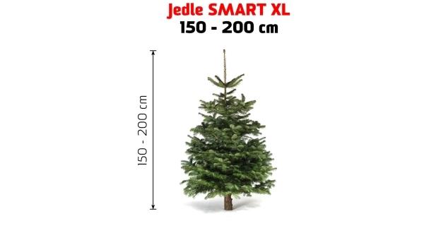 Jedľa Smart XL