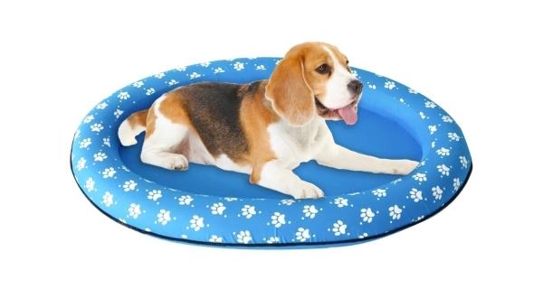 Nafukovacie lehátko pre psy